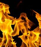 Flamas do incêndio em um fundo preto Imagens de Stock Royalty Free