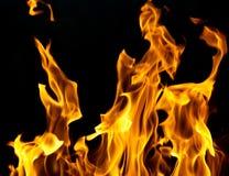 Flamas do incêndio em um fundo preto Imagem de Stock