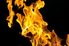 Flamas do incêndio em um fundo preto Fotos de Stock Royalty Free