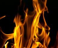 Flamas do incêndio em um fundo preto Imagem de Stock Royalty Free