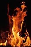 Flamas do incêndio em um fundo preto Fundo da textura da chama do fogo da chama Feche acima das chamas do fogo isoladas no fundo  Imagens de Stock
