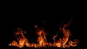 Flamas do incêndio no fundo preto imagens de stock royalty free