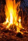 Flamas do incêndio no preto Foto de Stock Royalty Free
