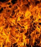 Flamas do incêndio Imagens de Stock