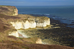 Flamborough Head Royalty Free Stock Photos
