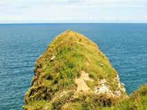 Flamborough huvudostkust UK Royaltyfri Bild