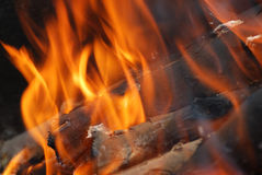 Flame. Burning firewoods in a fireplace Stock Photo