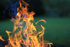 Flame. Closeup of fire flame outdoors Royalty Free Stock Photography