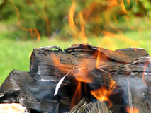 Flame. Burning logs Royalty Free Stock Images