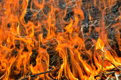 Flame and ash 6 Stock Photos