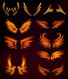 Bird fire wings fantasy feather burning fly mystic glow fiery burn hot art vector illustration on black. Flame bird fire wings fantasy feather burning blaze fly Royalty Free Stock Image