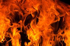 Flame blur Stock Images