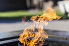 Flame with a blured background Royalty Free Stock Photos