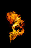 Flame Royalty Free Stock Photo