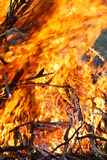 The flame of burning Royalty Free Stock Image