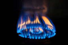 A flame burning on a gas stove Royalty Free Stock Image