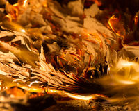 Flame when burning the paper Stock Photos