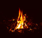 Flame of camp fire Royalty Free Stock Photography