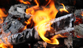 Flame dances on charred firewood logs at bonfire Stock Photo