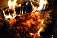 Flame and ember background. Beech and birch firewood burning over decaying coals and ember in a fireplace Stock Photo