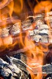 Flame , fire Stock Photography