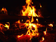 Flame of a Fire. Tongues of flame of a fire from logs Royalty Free Stock Photo