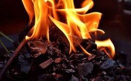 Flame, Fire, Campfire, Heat Stock Photos