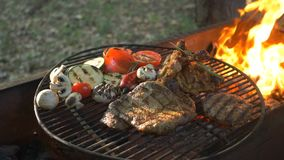 Flame of fire, country rest, juicy and tasty bbq burger cutlet, beef steak, grilled chicken leg, fresh vegetables. Flame of fire, country rest, juicy and tasty stock footage