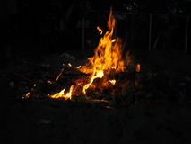 Flame. Fire in the dark burning Stock Images