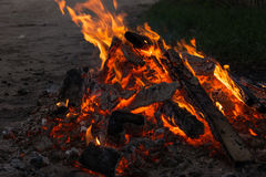 Flame fire and embers. Royalty Free Stock Photography