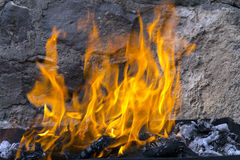Flame. Stock Images