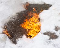 Flame of fire on white snow in winter Royalty Free Stock Photo