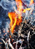 Flame on firewood. Flame from a group of burnt firewood Royalty Free Stock Photos