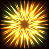 Flame flower Stock Image