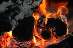 The flame in the furnace. Burning wood in stone oven Stock Image