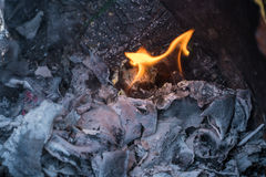 Flame of Garbage Fire in Steel Barrel Royalty Free Stock Photos