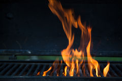 Flame grilled Stock Image