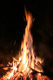 Flame of hot fire in dark Royalty Free Stock Image
