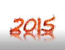 2015 flame. Royalty Free Stock Photography