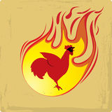 Flame red rooster Royalty Free Stock Images