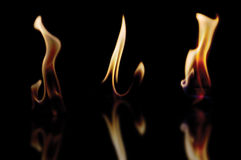 Flame samples. Flame samples isolated on black with reflection Royalty Free Stock Photos