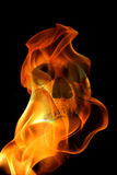 Flame skull Royalty Free Stock Image