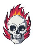 Flame and Skull with Evil Look. On white background Stock Images