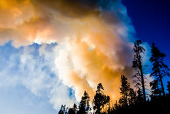 Yellowstone Wildfire. Flame and smoke rise above the forest as a wildfire races through Yellowstone Park Stock Photos
