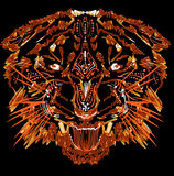 Flame tiger Royalty Free Stock Image