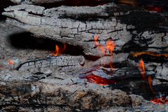 Flame tips on the firewood. Royalty Free Stock Photography