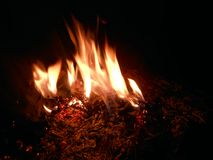 Flame. Warm outdoor fire at night Stock Photos