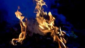 Flamee la cámara lenta del fuego que quema en fondo negro metrajes