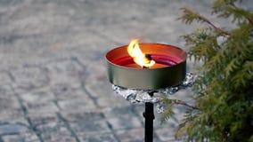 Flamee la cáscara con una llama amarillo-naranja brillante y una cera reflectora ligera almacen de metraje de vídeo