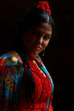 Flamenco έτος Λα Jeranys χορευτών Στοκ Εικόνα